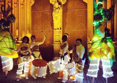 Luminous parade in the tropics